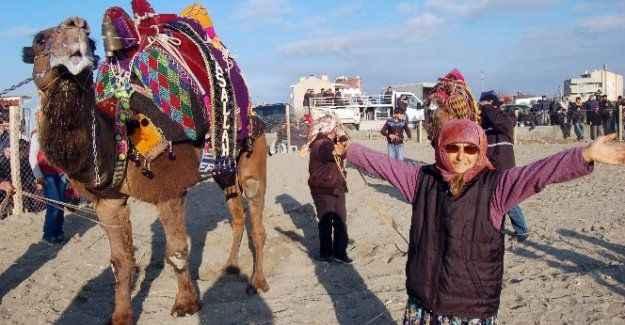 73 yaşındaki kadın devesiyle güreşlere katıldı