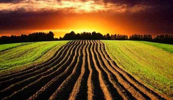 12 taksitle tarım arazisi!