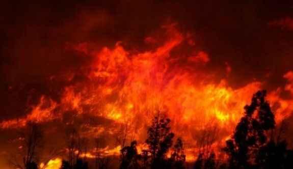 Büyük orman yangını