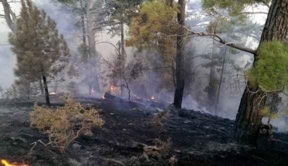 24 saatte 24 yıldırım yangını
