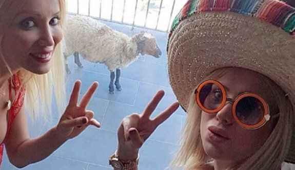 Kurbanlık koyunla tatile gittiler!