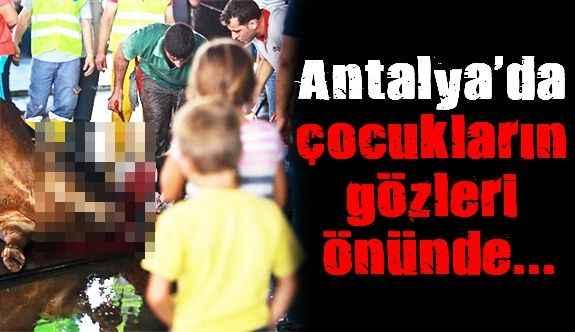 Antalya'da çocukların gözleri önünde...