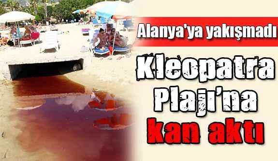 Kleopatra Plajı'na kan aktı
