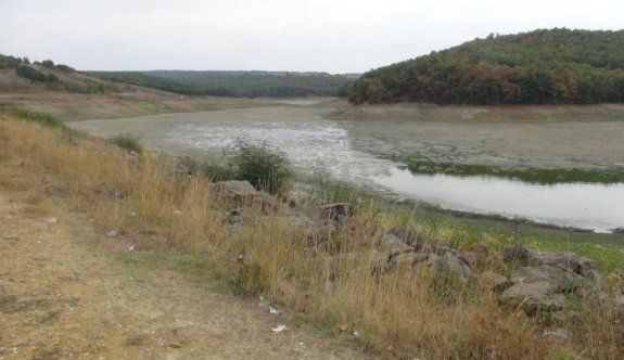 Gölet kurudu, binlerce balık telef oldu