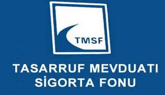 İki firma TMSF'ye devredildi