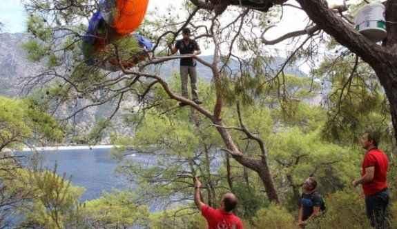 Paraşütçünün hayatını ağaç kurtardı