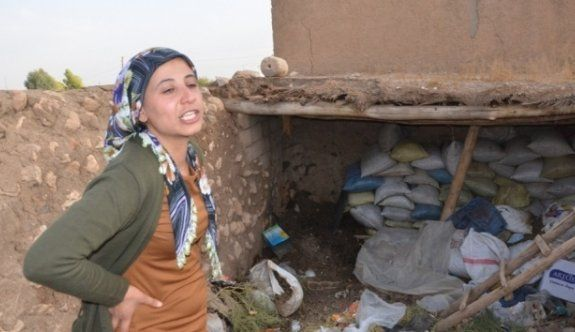 Başı kesilerek öldürülen Ayşe'nin ablası konuştu