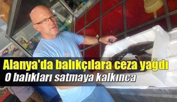 Alanya'da balıkçılara ceza yağdı