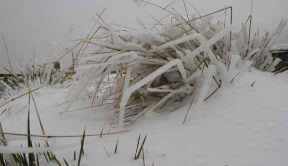 Kar yağışı felç etti