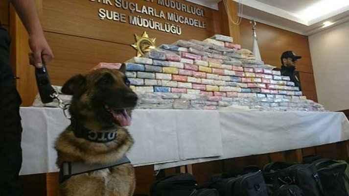 İspanyolların bulamadığı 212 kilo kokaini, Maya ve Fırtına buldu