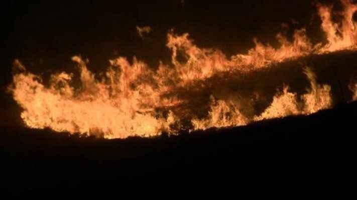 4 il için orman yangını uyarısı