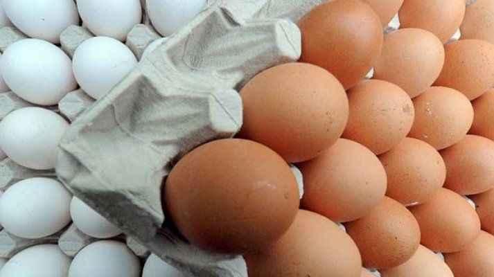 Zehirli yumurta skandalında flaş gelişme!