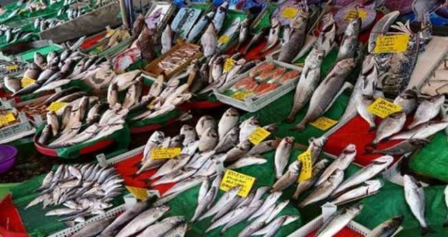 Av yasağı sona erdi, balık fiyatları düştü! İşte tezgahlarda son durum