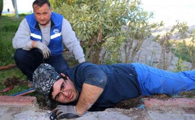 Turistin dikkati köpeği kurtardı
