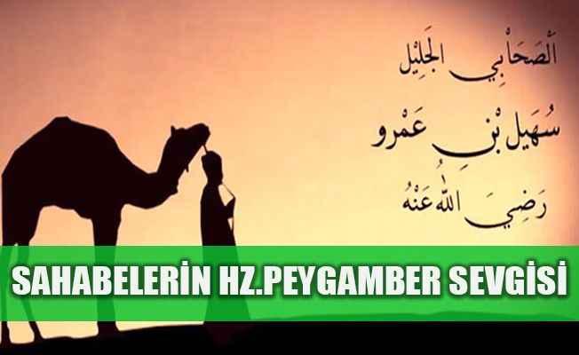 Sahabilerin Hz. Peygamber sevgisi