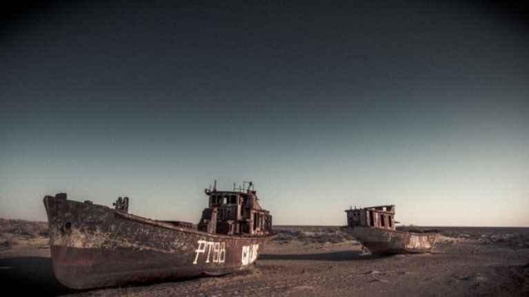 Özbekistan kuruyan Aral Gölü'nün yatağını ormana çevirmek istiyor