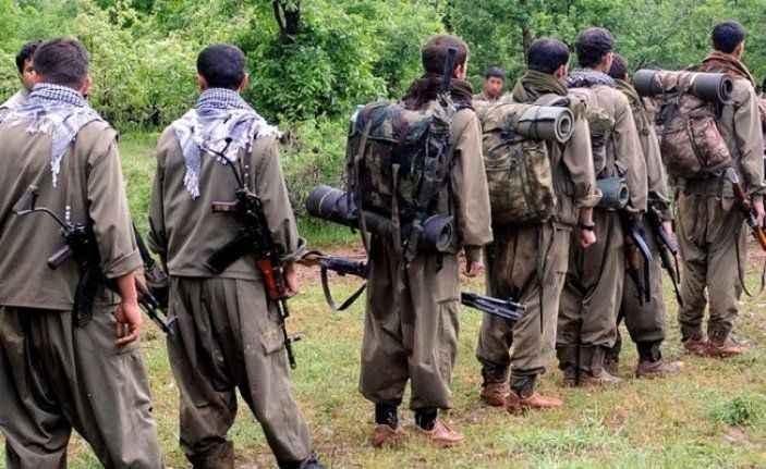 Şırnak'ta üst düzey PKK'lı terörist teslim oldu