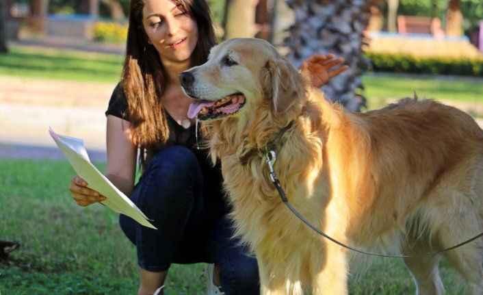 İnternetten 10 aylık diye aldığı köpek 4 yaşında ve kalp hastası çıktı