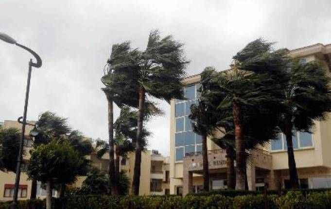 Kemer'de fırtına ağaçları kökünden söktü