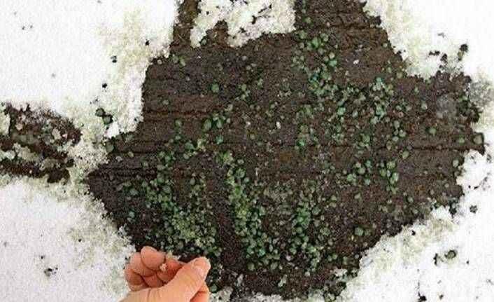 Türk kimyager üretti: Kar ve buzu 20 dakika içinde çözüyor