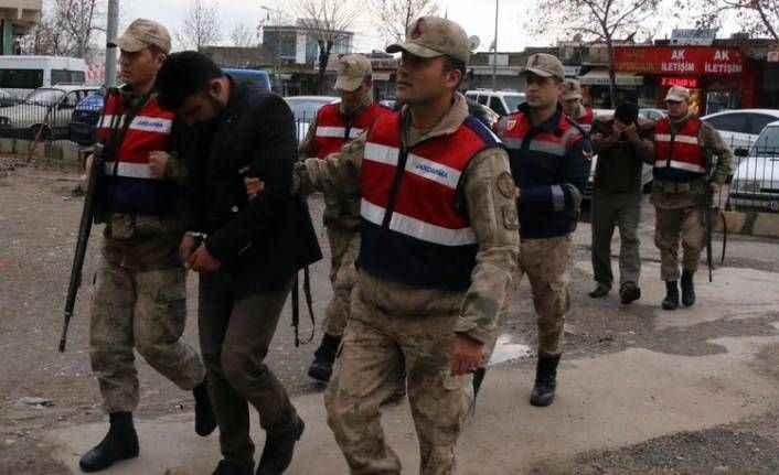 Oklu kirpiyi öldürenlere toplam 19 bin lira ceza