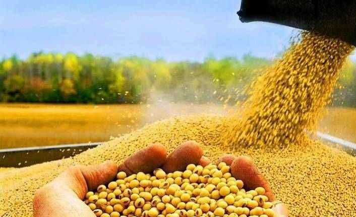 Dünya tarımındaki son gelişmeler ALKÜ'de tartışılacak