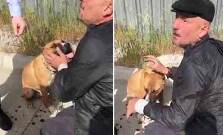Köpeği motosiklete bağlayıp sürükledi! Savunması 'yok artık' dedirtti