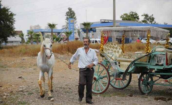 Antalya'da fayton dönemi sona erdi, atlar hayvanat bahçesine teslim edildi