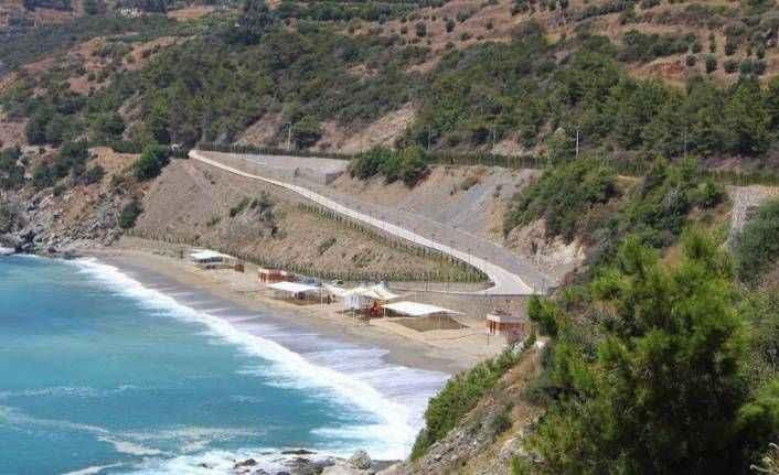 Böcek Alanya'daki plaj için son noktayı koydu