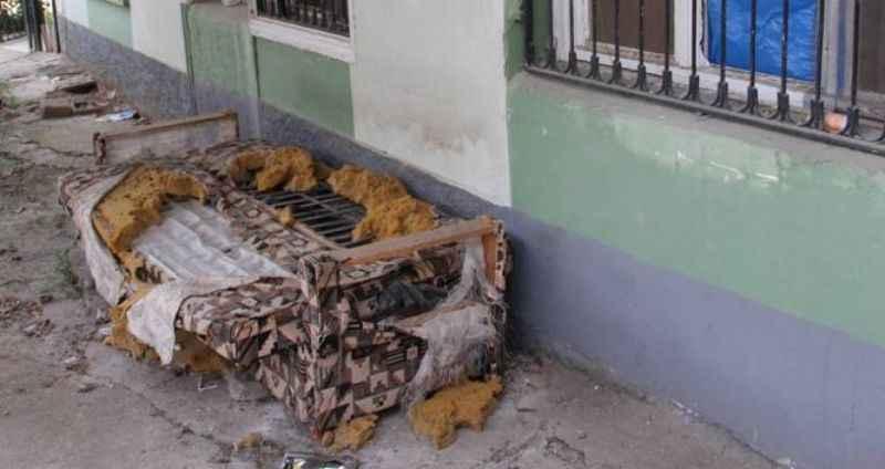 Dışarıya atılan kanepeyi köpek parçalayınca altınlar ortaya saçıldı!