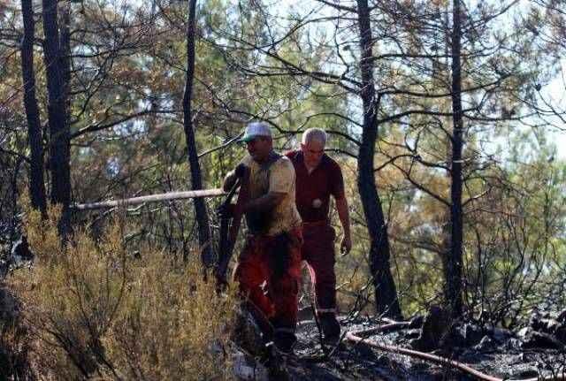 Alanya'da orman yangını! 5 dönüm alan alevler içinde kaldı