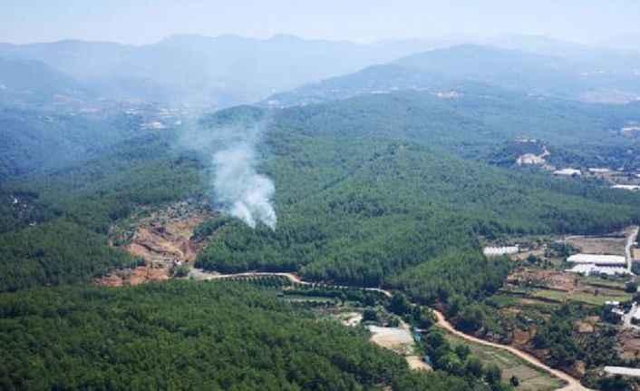 Son dakika... Alanya'da orman yangını!