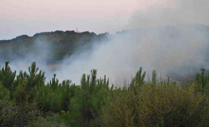 İstanbul Valiliği: Aydos'taki orman yangınını 2 çocuk çıkardı