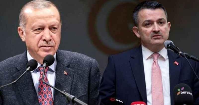 Erdoğan destek vermişti! Ağaç Dikme Bayramı için harekete geçildi