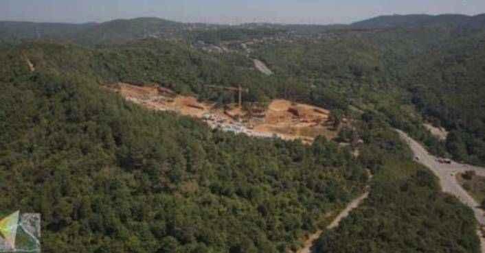 Ormana yapılacak 553 villa için binlerce ağaç kesilecek