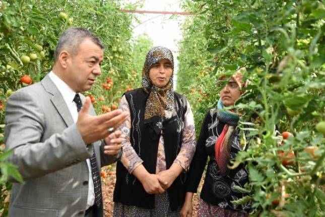 Antalya'da 19 bin 630 kadın üreticiye eğitim
