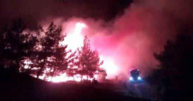 Tarihi Gelibolu Yarımadası'nda korkutan orman yangını!