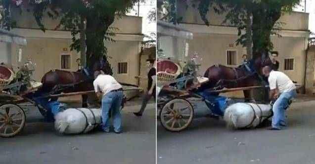 Büyükada'da yorgunluğa dayanamayan at bayıldı