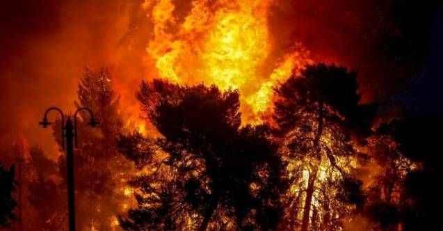 Türkiye cayır cayır yandı! 1 ayda 300 orman yangını: Son yangın Alanya'da