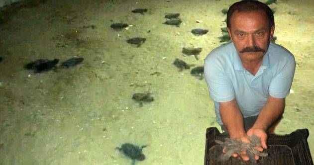 Alanya'da vatandaşlar yavru caretta carettaları denizle buluşturdu