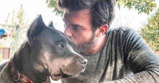 Kıvanç Tatlıtuğ'un köpeği Mars kansere yakalandı