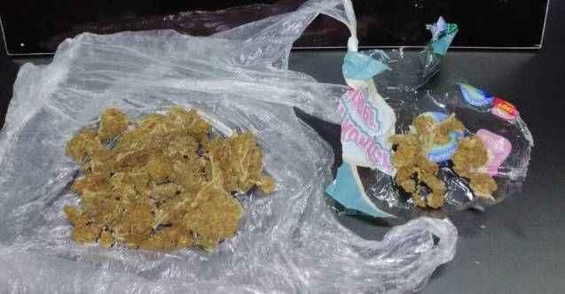 Alanya'da narkotikten uyuşturucu avı