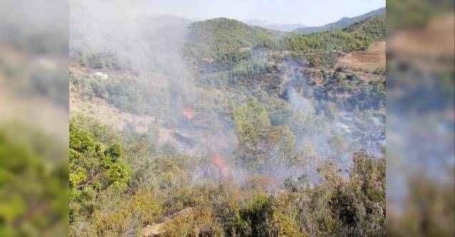 Gazipaşa'da bu yıl 8 orman yangını çıktı