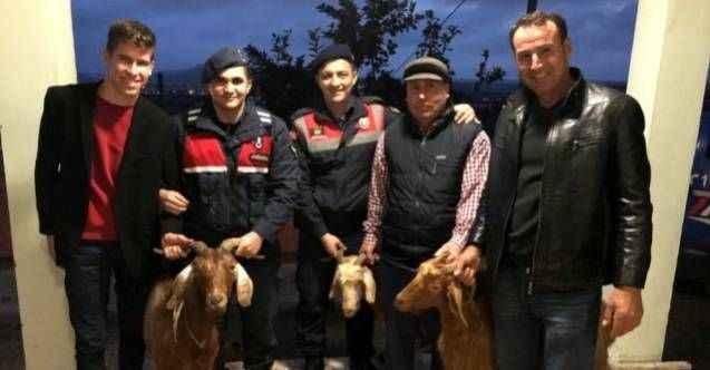 Alkol almak için keçi çaldılar! Alanya Cezaevine gönderdiler