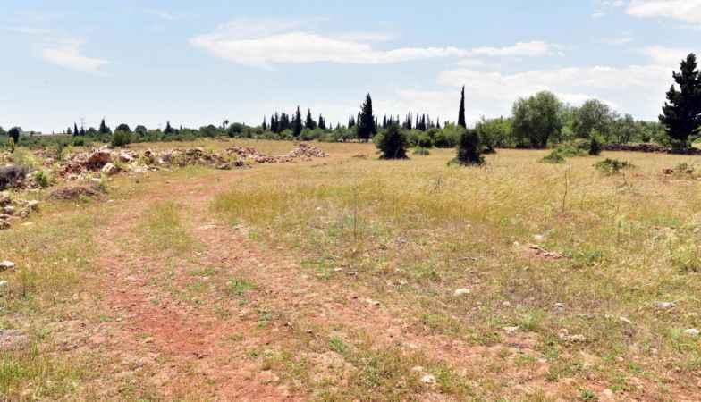 Antalya'ya orman çiftliği kurulacak