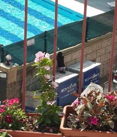 Çöp konteyneri üzerinden havuzdaki yaşıtlarını izleyen kağıt toplayıcı çocuğa sürpriz