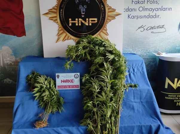 Uyuşturucu ve kaçak sigaraya 5 gözaltı