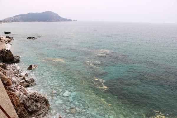 Büyük tehlike! Alanya kıyılarında deniz salyası alarmı
