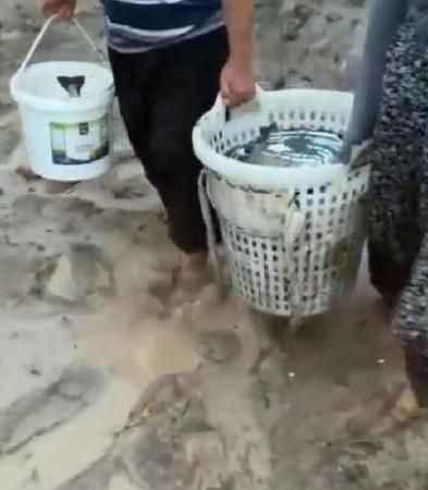Sel suları tesisteki balıkları tarlalara sürükledi! Bölge halkı tarladan balık topladı
