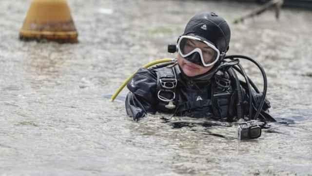 Deniz salyasının yararı ortaya çıktı! Yaralara merhem olacak